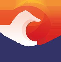 Logo Designfüchse 200